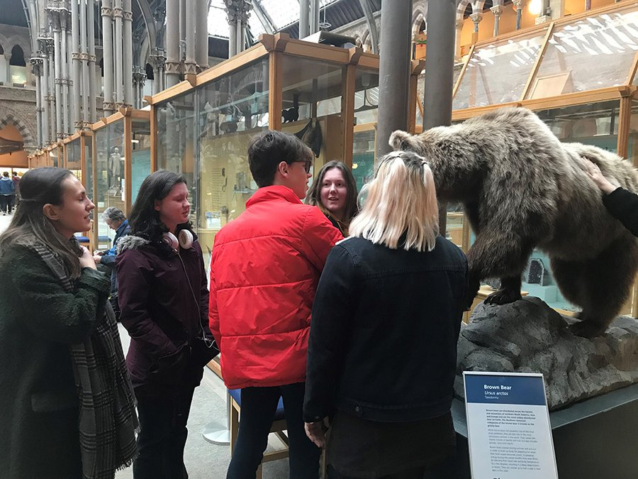Picture of a school group encountering a bear on a visit to the Natural History Museum